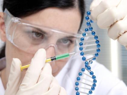 Всего один белок отвечает за скопление лишнего жира в крови человека