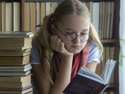 Книгу о младшей школе на ТВ посчитали «вредительской»