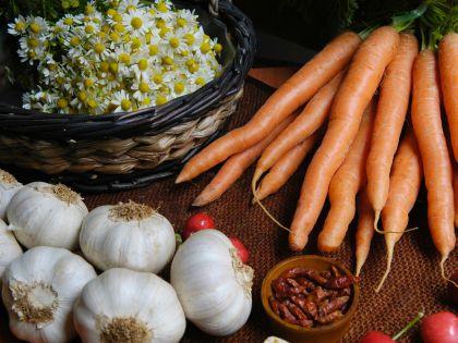 Некоторые овощи и пряности можно вырастить даже в квартире