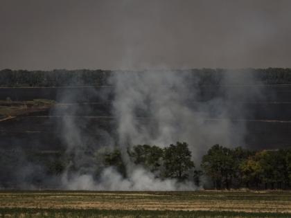 80 возгораний травы зафиксировали в Новой Москве за последние 4 дня