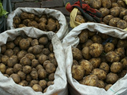 Есть миф, что когда моешь выкопанный картофель, то вместе с землей смываются какие-то полезные вещества