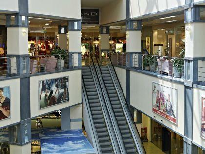Кинологи обследуют помещения торгового центра