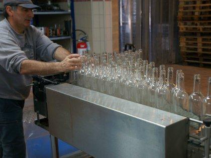 В компании работают 5 менеджеров и 9 постоянных рабочих, для уборки винограда привлекают сезонный персонал