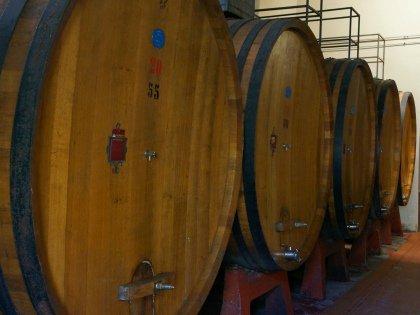 Компания уже подала заявку на участие в Solo Italiano Grandi Vini – крупнейшей выставке итальянских вин