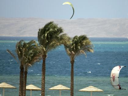 По мнению депутата Марченко, климат зарубежных курортов вредит здоровью россиян