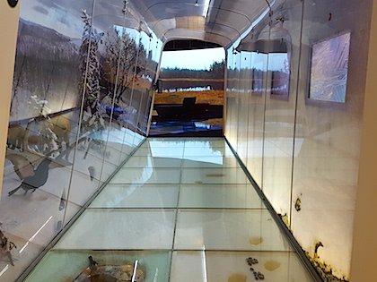 Интерактивный природный музей «Халтия»