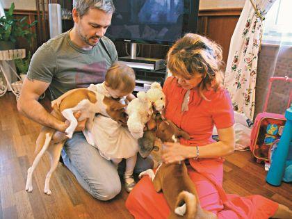 В семье Губановых две собаки породы басенджи, их еще называют африканские нелающие. Псы могут только рычать