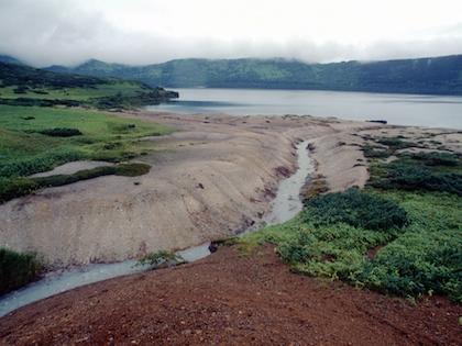 Япония заключит мирный договор с Россией, если ей вернут Курильские острова
