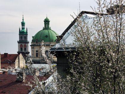 Во Львове очень много церквей