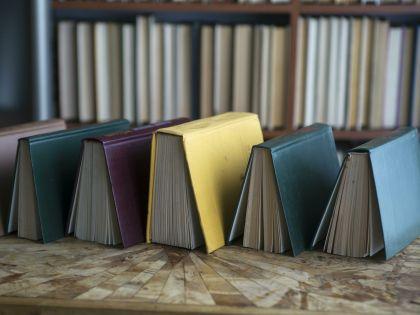 2015 год был объявлен Годом литературы