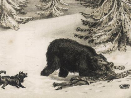 19 век закончился, а традиция охотиться осталась