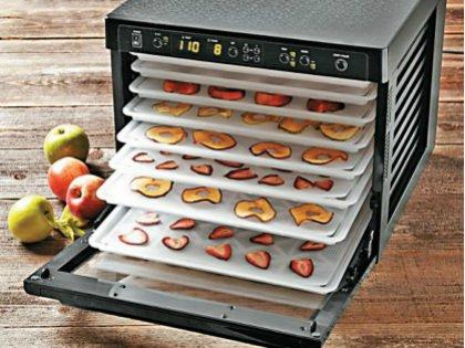 Сушилки для овощей, фруктов и ягод бывают двух типов нагрева: инфракрасный и конвективный