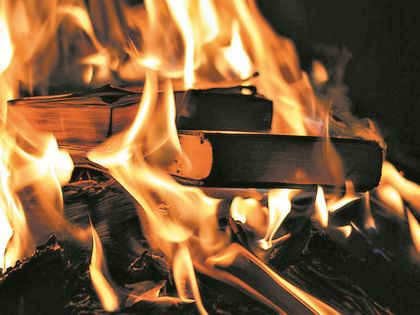 Даже министр Мединский публично осудил сжигание книг...