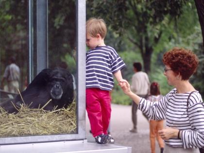 Ребенок в зоопарке