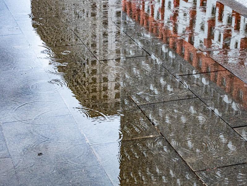 Столичный регион сегодня и завтра ждет прохладная и ветреная погода с дождями