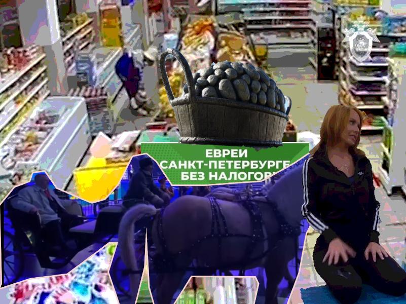 Жириновский с конями, первое интервью МакSим и памятник картошке: новости к вечеру 13 сентября