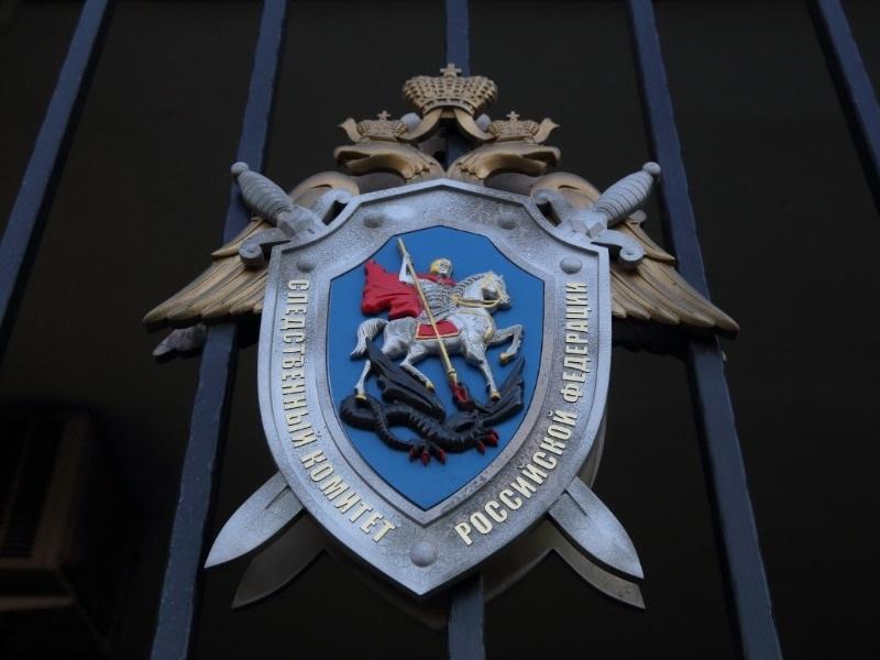 СК вызвал на допрос женщину, привезшую гроб сестры к зданию администрации Балашихи