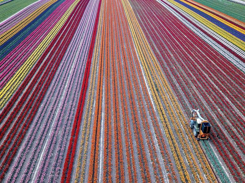Фото: Sascha Steinbach / ТАСС