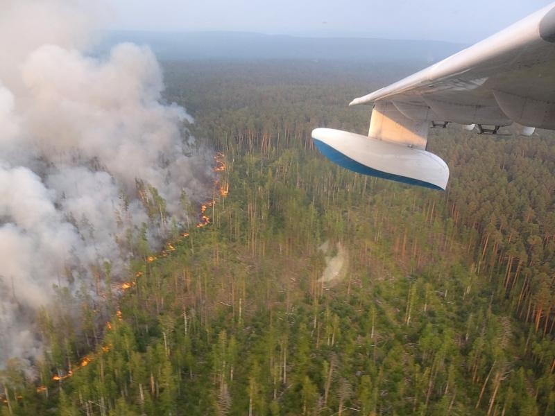 Сибирь в огне // фото: МЧС России / ТАСС