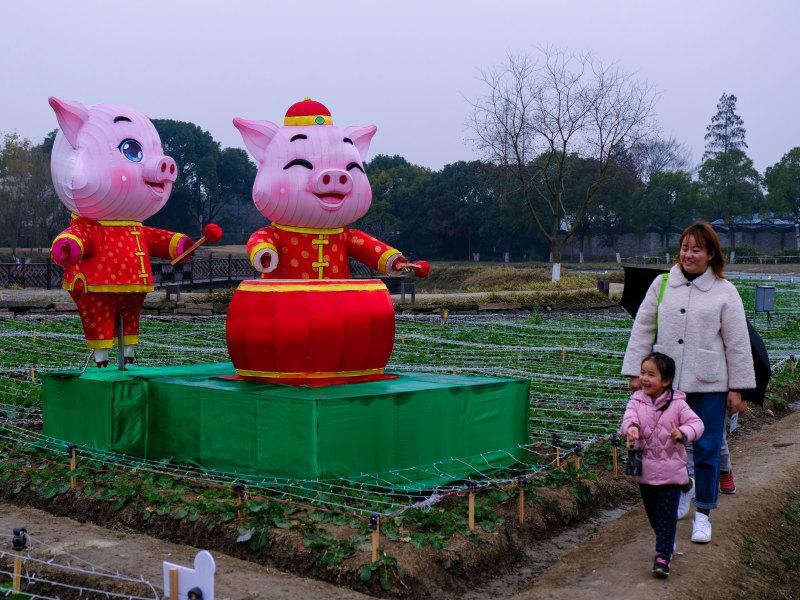 фото: Xinhua / Global Look Press