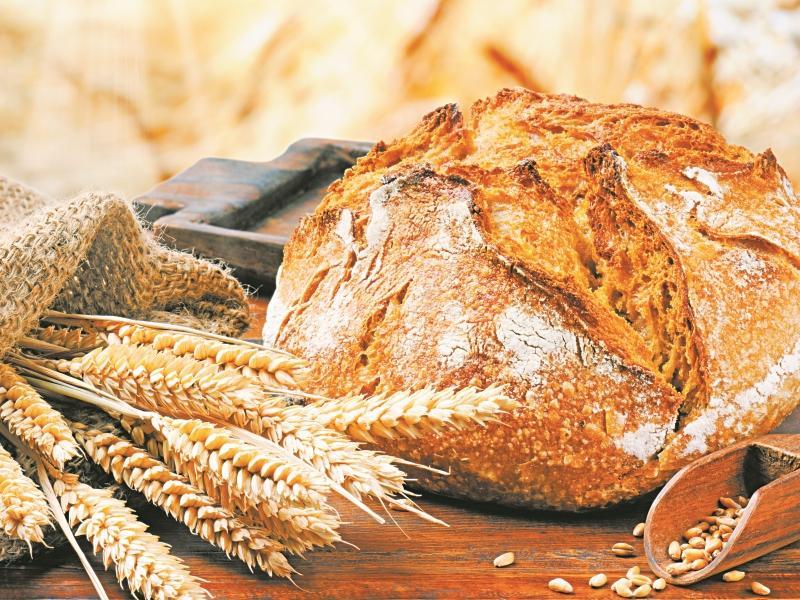 Домашний хлеб своими руками – от выбора ингредиентов до аппетитной корочки