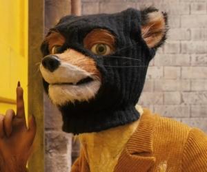 """Кадр из фильма """"Бесподобный мистер Фокс"""" // фото: скриншот с YouTube"""