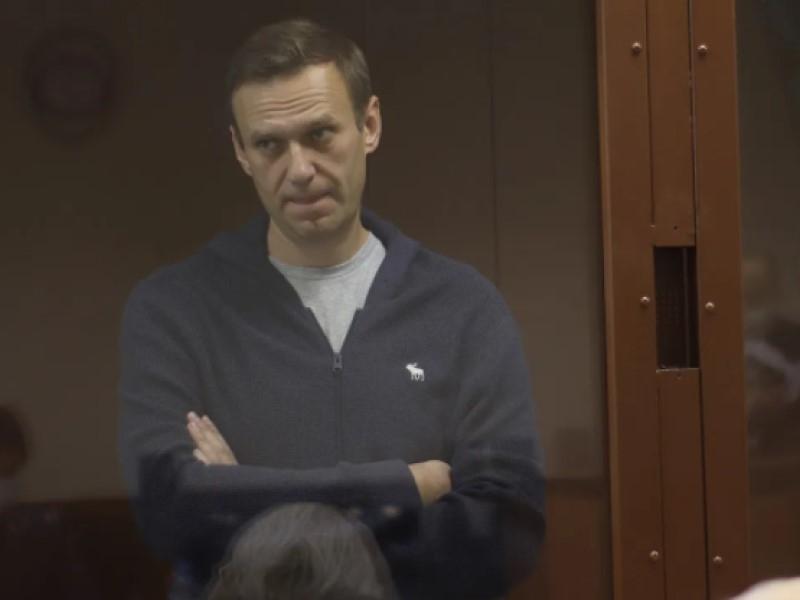 Алексей Навальный // Фото: пресс-служба Бабушкинского районного суда города Москвы