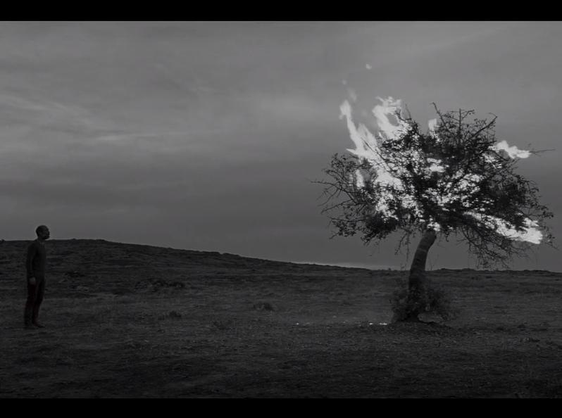 """Кадр из фильма """"Зерно"""" // Фото: скриншот с YouTube"""