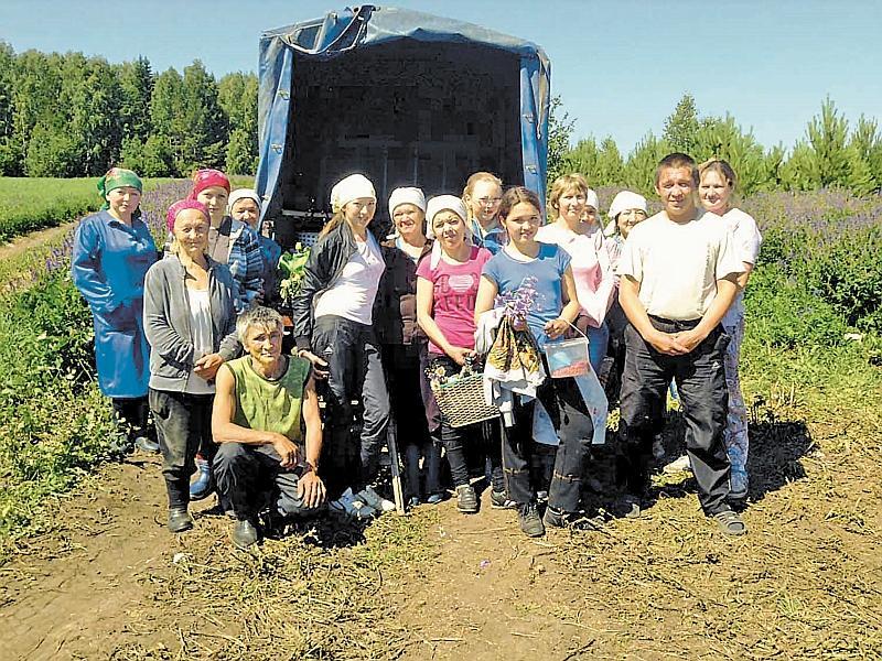 Отряд сборщиков ягод разросся с 10 до 230 человек! // фото: cocco-bello.com