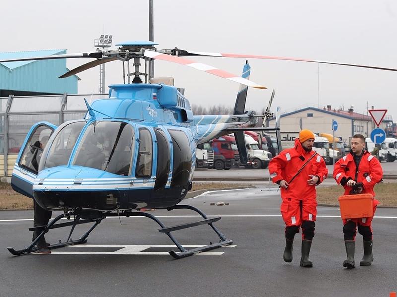Фото: Авиационная служба по спасению детенышей тюленей / vkontakte.com