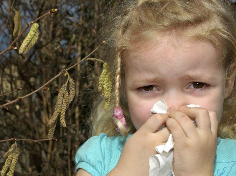 Остерегаться березы в период пыления мало: многие пищевые продукты могут вызывать у больных поллинозом точно такую же реакцию // фото: Global Look Press