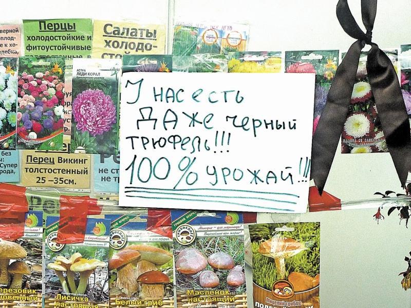 Фото: Олег Шаповалов / «Собеседник»