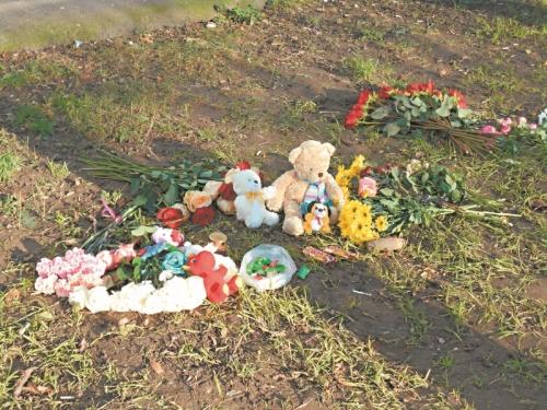 На месте, где разбились Людмила и ее дети, сейчас цветы и игрушки