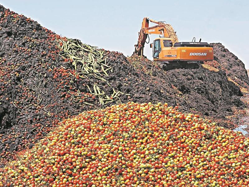 Безумный мир! Где-то голодают, а где-то уничтожают продукты – тысячами тонн