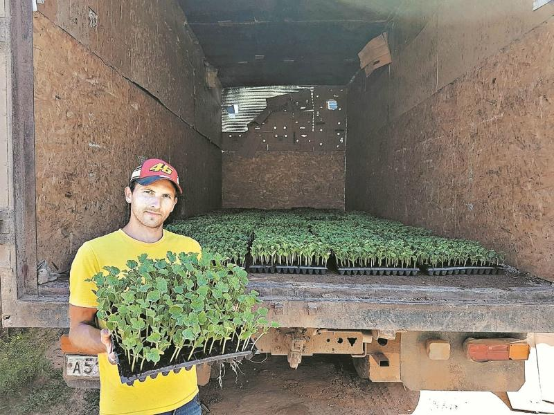 Дмитрий Калинкин знает, как вырастить самый сладкий арбуз