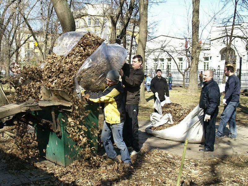 Дачникам на заметку: опавшие листья превратятся в отличный компост // фото: Global Look Press