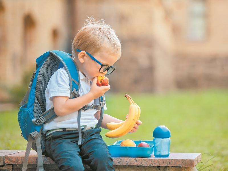 Идеальная диета с точки зрения науки: такая существует? | hi-news. Ru.