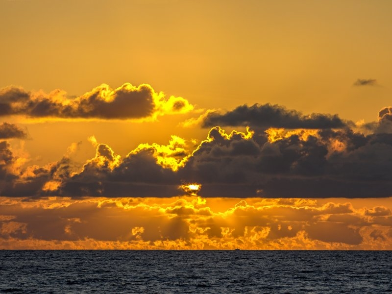 фото: Lannis Waters / ZUMAPRESS.com / Global Look Press